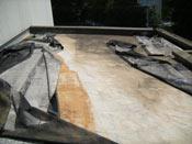 塩ビシート防水 機械的固定工法 施工前の状態